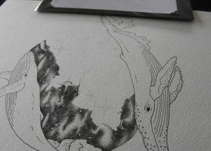 Alex Moyse – Insomniart - The Quarry Arts Centre