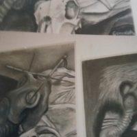 Fine Art – Creative Charcoal